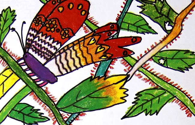 漂亮的蝴蝶 儿童画蜡笔画图片