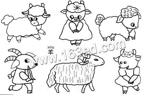 动物简笔画:羊3