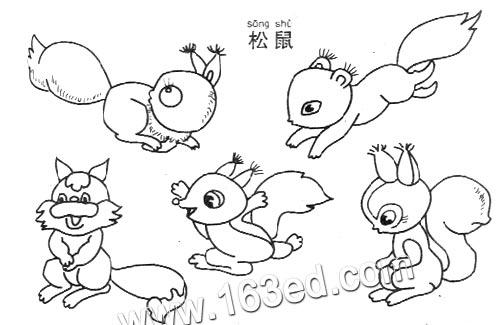 动物简笔画:松鼠3—简笔画网