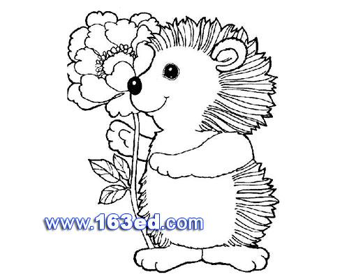 简笔画:刺猬与花