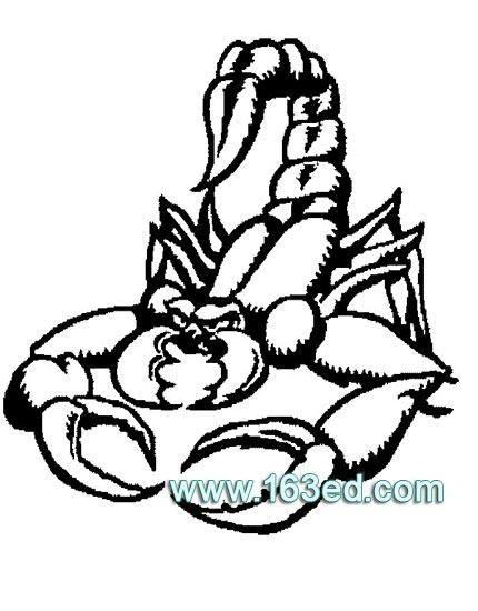 蝎子简笔画2