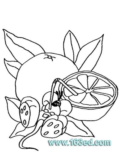 正面老鼠简笔画图片 儿童简笔画老鼠兔子 老鼠图片简笔画
