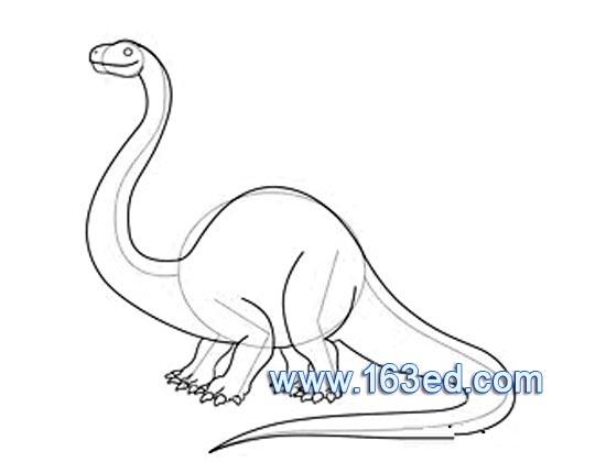 动物简笔画:恐龙13