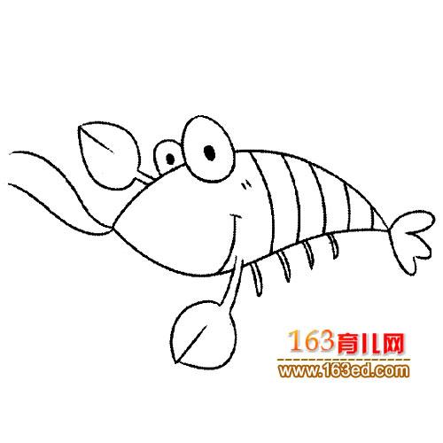 简笔画 可爱的小虾3