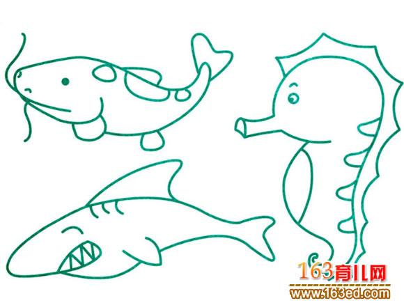 海鱼的种类图片画法图片 海鱼的种类图片,海鱼的种类名称图