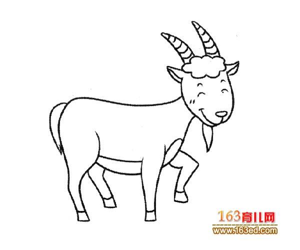 小山羊的简笔画法