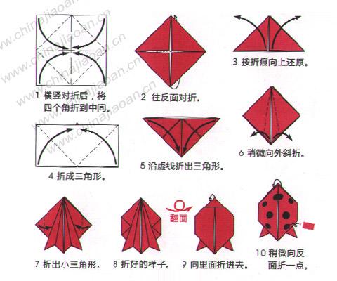 儿童手工折纸:瓢虫