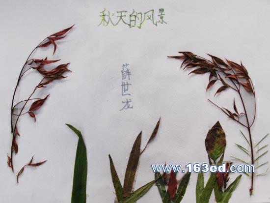 树叶粘贴画风景篇 秋天2