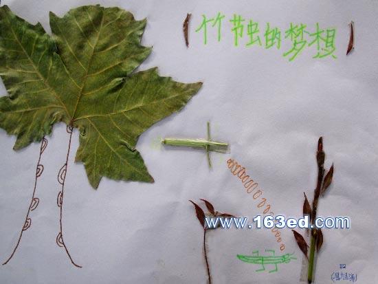 景物的剪贴画-树叶粘贴画风景篇 竹节虫的梦想