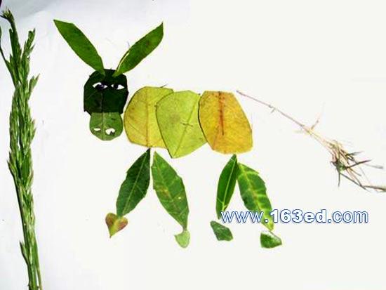 树叶粘贴画动物篇 小毛驴2