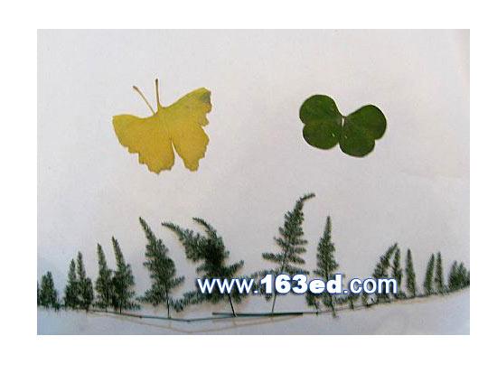 树叶粘贴画昆虫篇 两只蝴蝶6