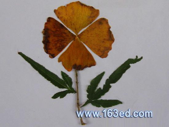 树叶粘贴画 鲜花6