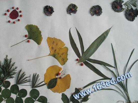 幼儿树叶粘贴画 风景7