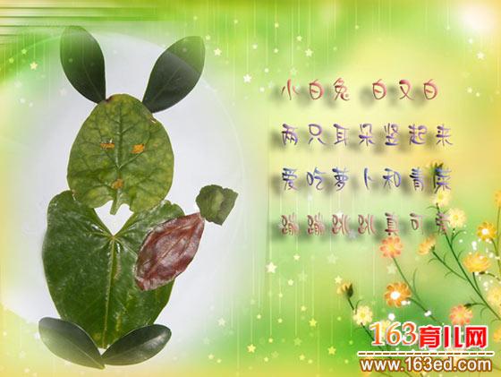 小白兔(树叶粘贴画)—树叶贴画
