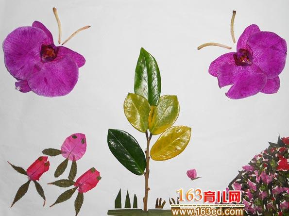 彩色的蝴蝶 树叶粘贴画作品