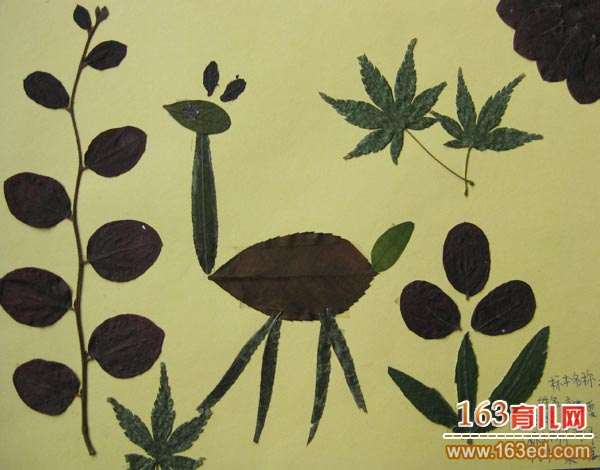 儿童树叶粘贴画作品 高脚的鸵鸟